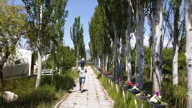 Иссык-куль. Гостевые дома в Киргизском взморье. Часть 2