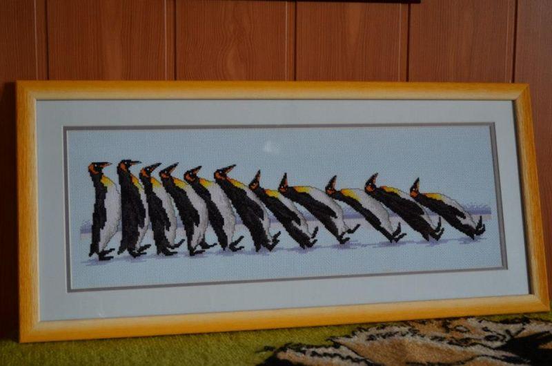 Пингвины. Жвут у дочки в комнате