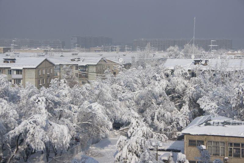 Снежный снег