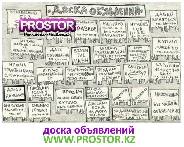 gallery_2699_14769_116438.jpg