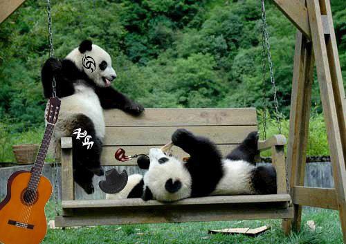 10 Малыши панды на качелях