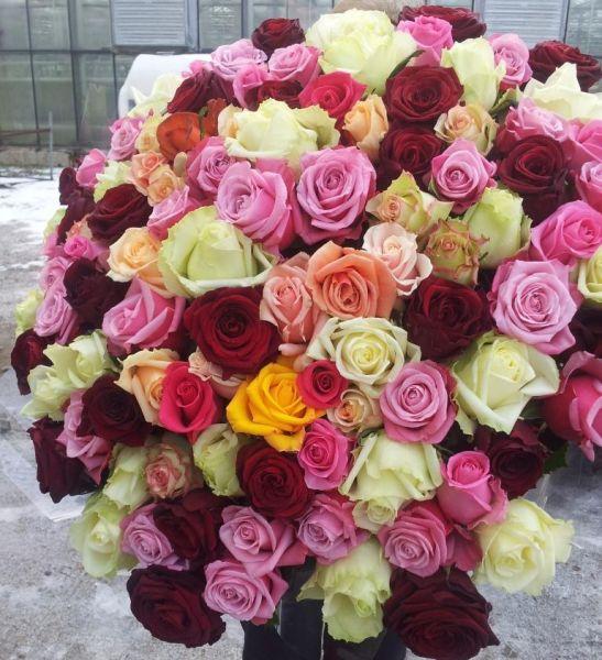Букет из роз разных цветов