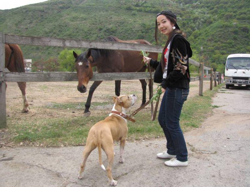 Племянница с Кусулей. На заднем плане лошадь =)