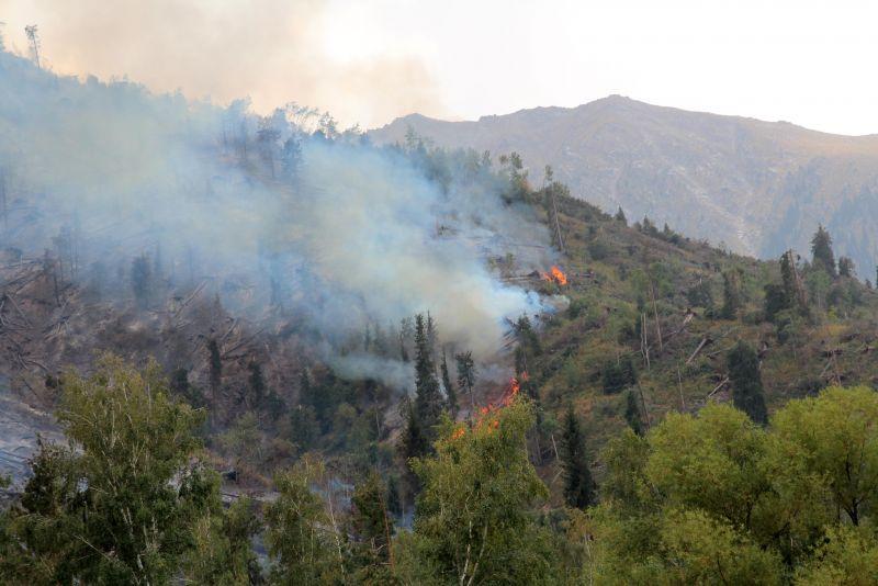 Пожар. Махнатка 2012