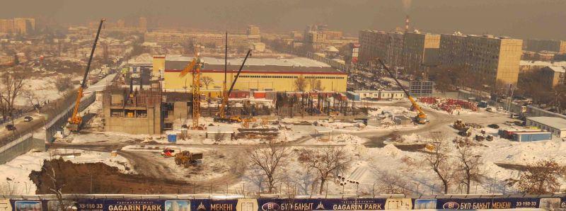 Гагарин парк 25 ноября 2016