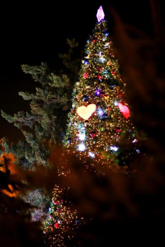 Новогодняя Елка в ArLine ко встрече Нового 2013 года готова