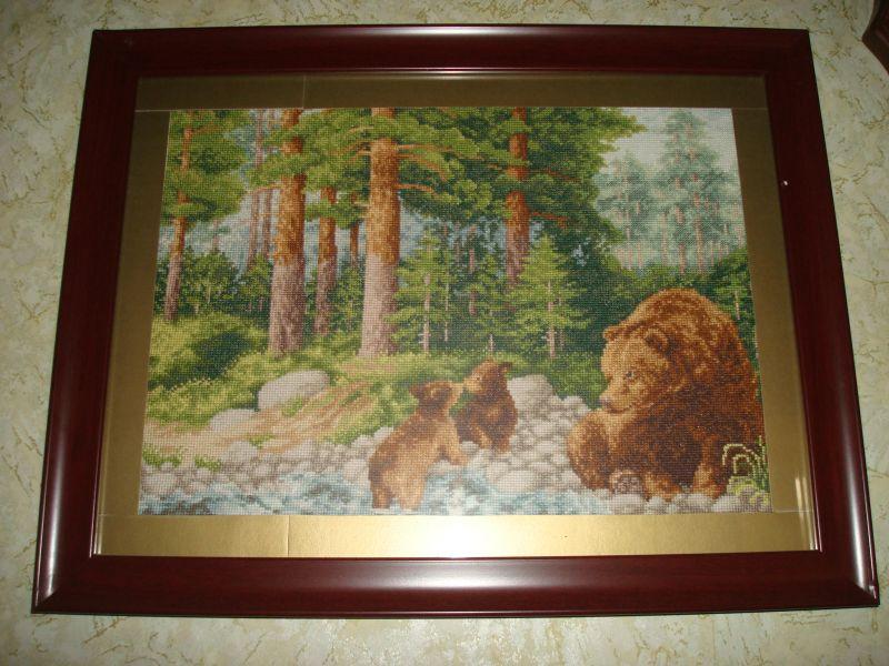 DSC02494Медведи в лесу