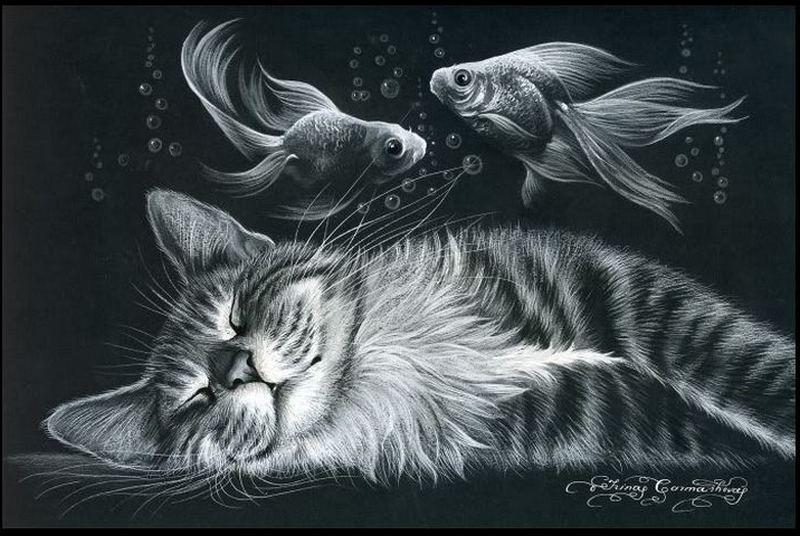 кот и рыбки