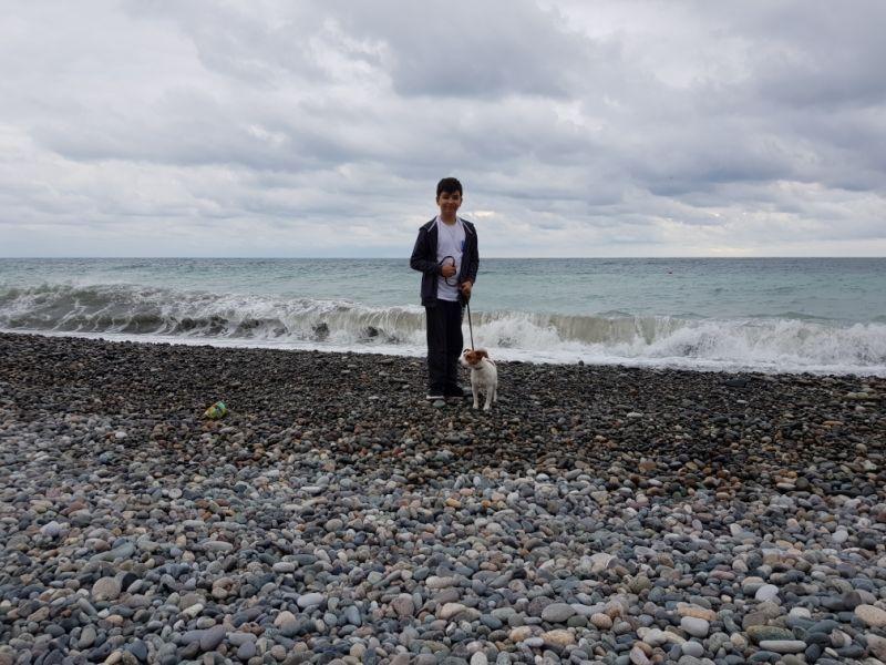 Тама - смело не убегающая от моря собака