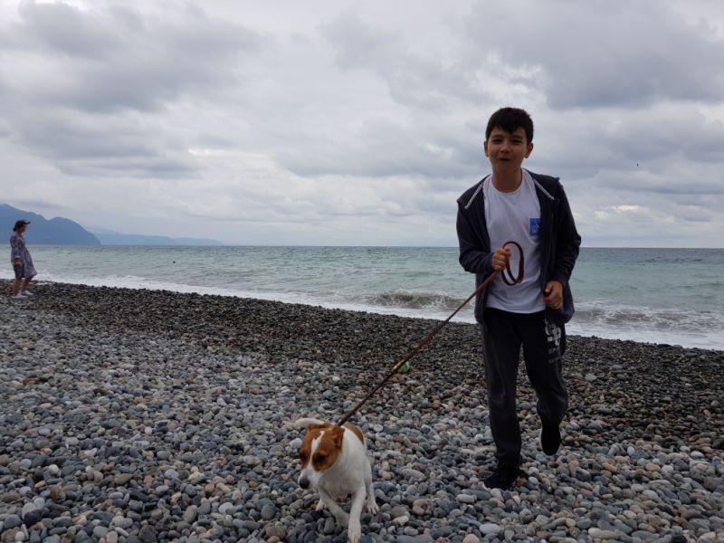 Тама- храбро убегающая от моря собака