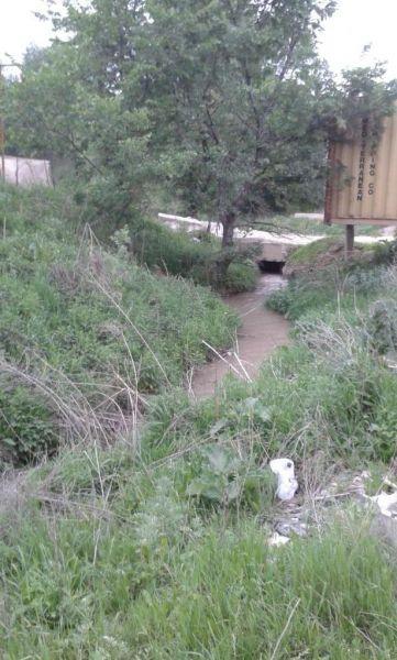 Речка по южной границе участка (2)