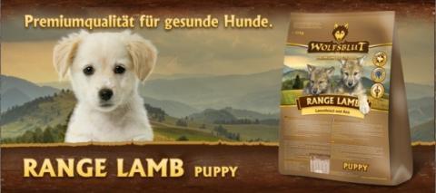 Range Lamb Puppy 2.jpg