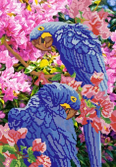хищники.jpg; попугаи.jpg