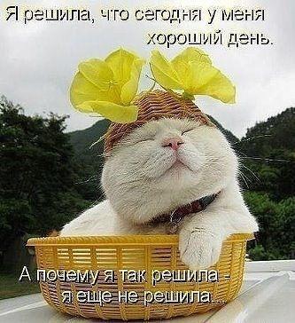 ImageUploadedByTapatalk1391231075.367519.jpg