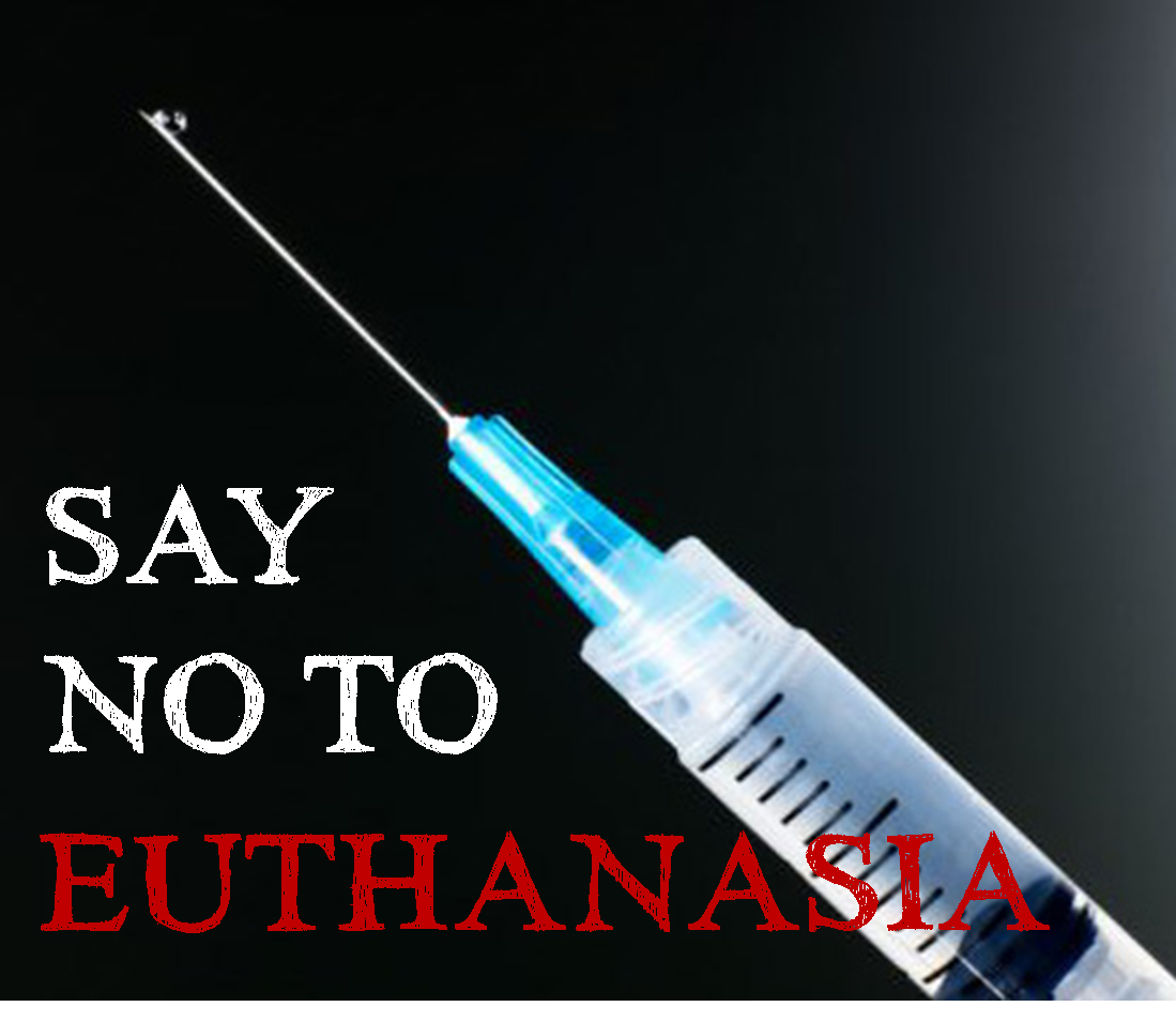 reaction to euthanasia Impact of euthanasia on the family an issue that is often overlooked in the debate over legalisation of euthanasia and assisted suicide (eas.