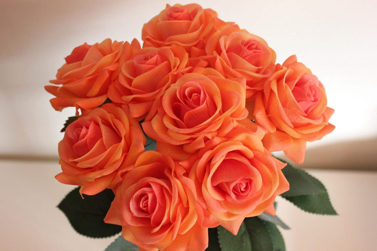 крепить розы персиковый цвет фото представитель фотостудии