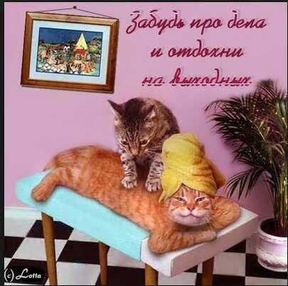 uploadfromtaptalk1424451281212.jpg
