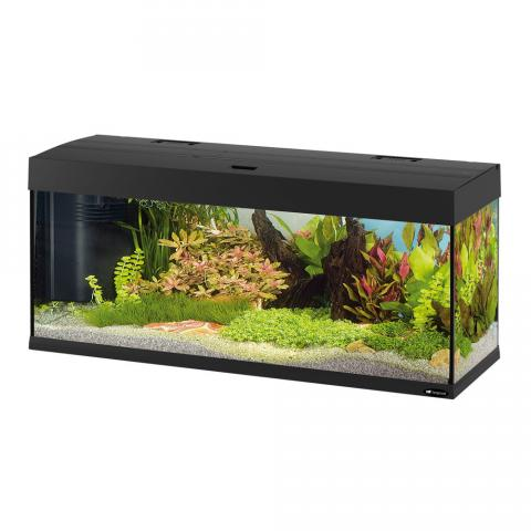аквариум dubai черный.jpg