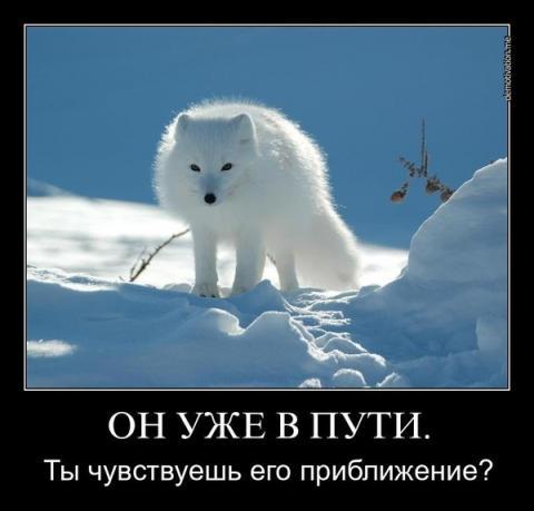 _Nw5E__UWM8.jpg