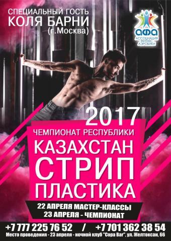 СТРИП  ПЛАСТИКА 2017.jpg