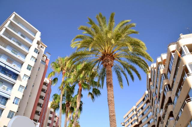 Работа и жилье в испании