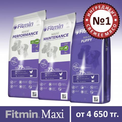 260617_Fitmin_Maxi_линейка.png