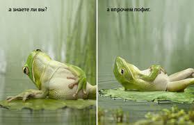 images4.jpeg