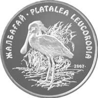 50Kolpitsa-r.jpg
