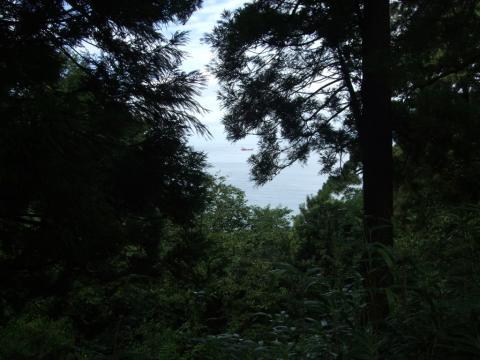 026-1.jpg