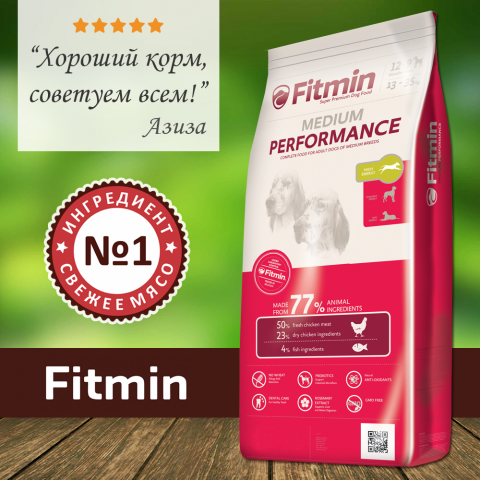 100817_Fitmin_medium_performance.png