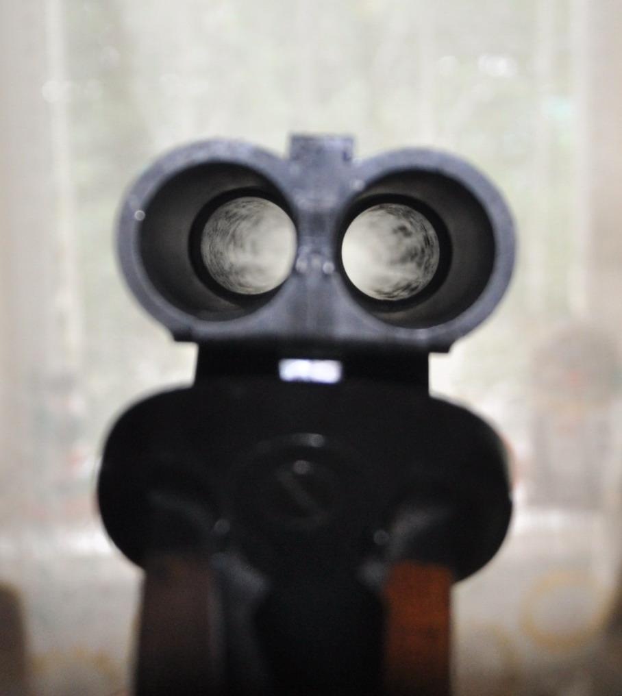 раковины в стволе ружья гладкоствольного фото