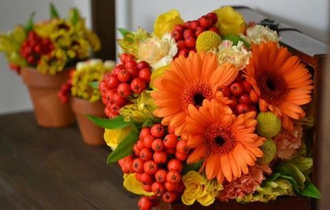 cveti-13.jpg