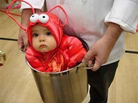 cute-homemade-halloween-costumes-baby-lobster.jpg