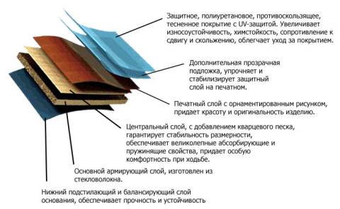 pvh.jpg