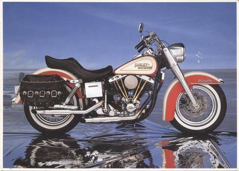 11025 Harley Davidson.jpg