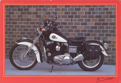 00183 004 Harley Davidson Sportster customise.jpg