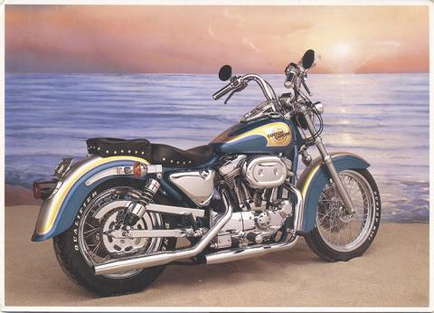 11674 1991 Custom Sportster.jpg