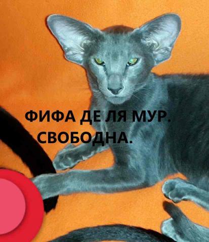 22835301_1724994847513362_1122443181_n.jpg