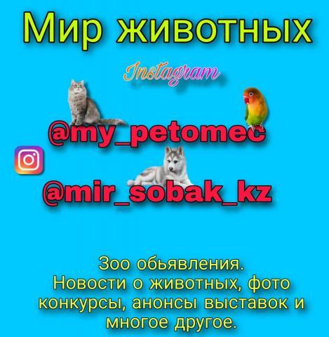 20201015_125024.jpg