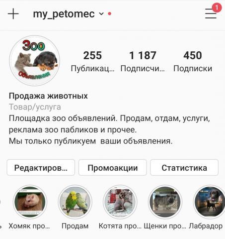 Screenshot_20201016-134223_Instagram.jpg