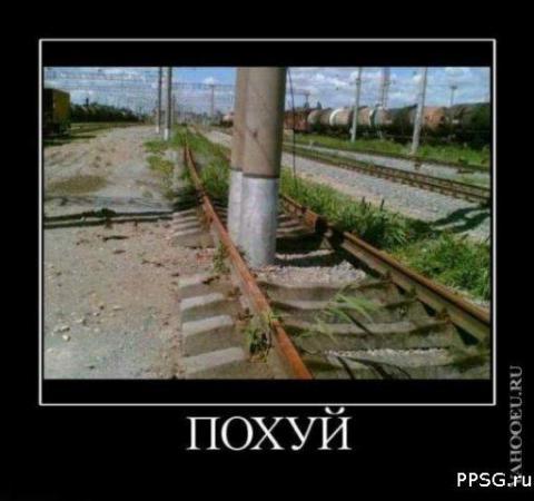 x_1663b7c2.jpg