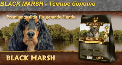 Black Marsh.jpg