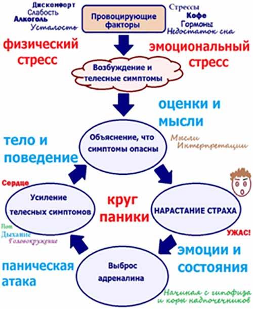 krasivie-transi-foto