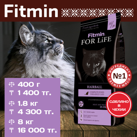 081117_Cat_for_Life-Hairball.png