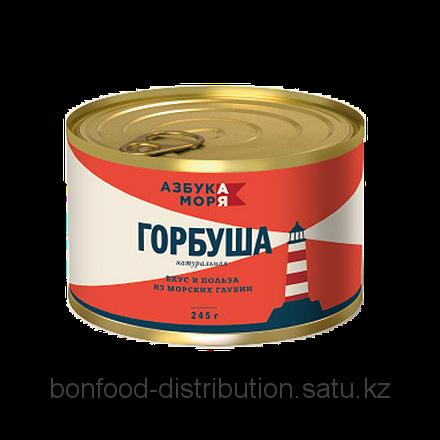 107367628_w440_h440_gorbusha-azbuka-morya.png