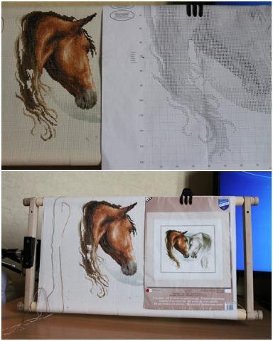 кони.jpg