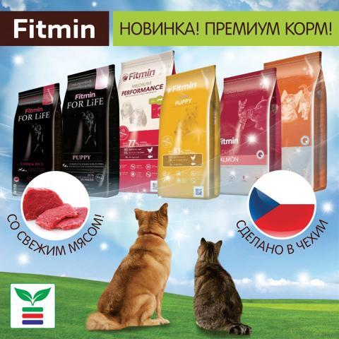Fitmin1.jpg