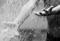 Фотография rain_heart
