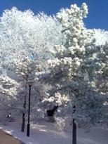 Фотография Krim Sky