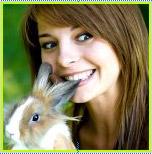 Фотография Bunny